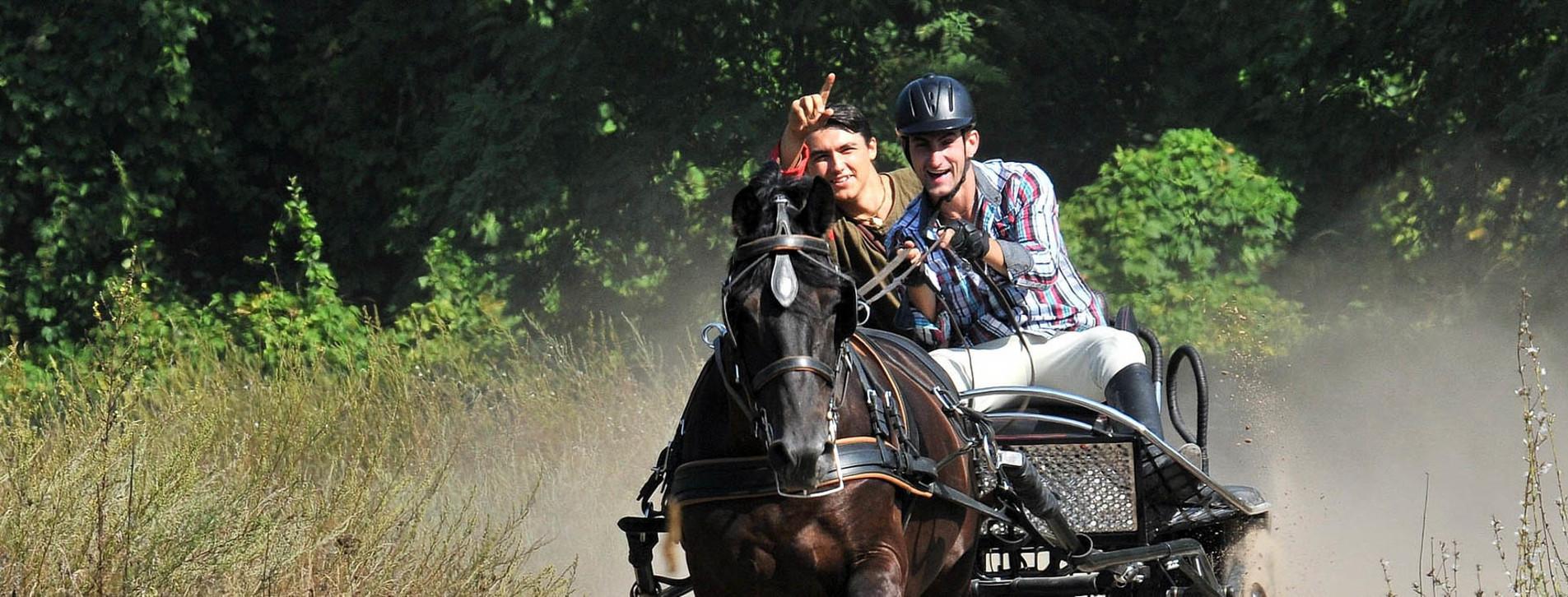 Фото 1 - Драйв на спортивных колесницах для двоих
