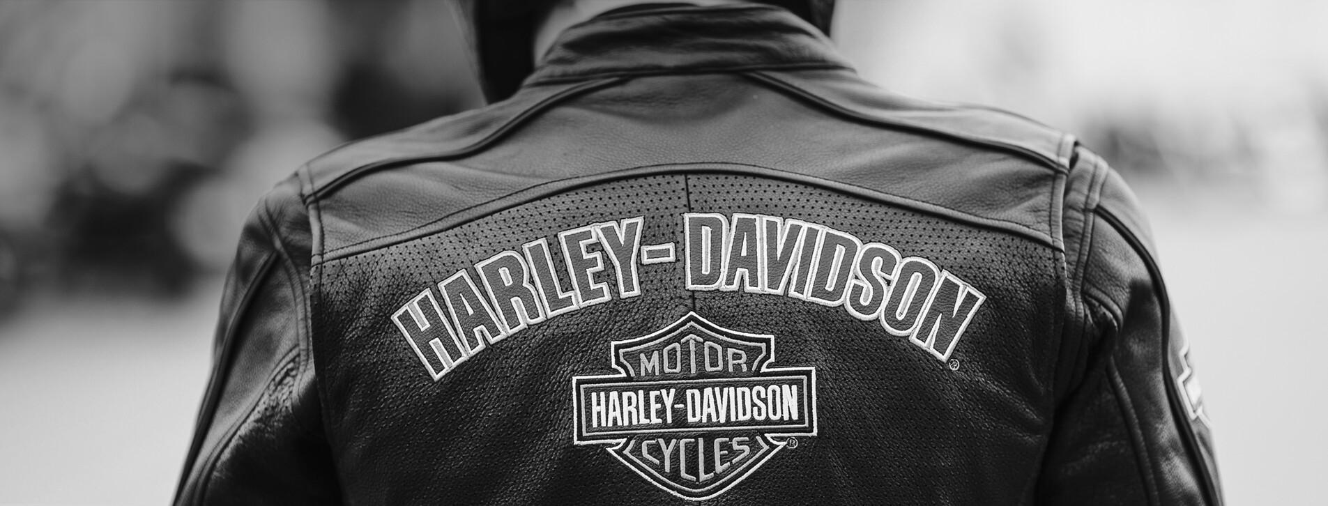 Фото 1 - Урок на Harley-Davidson
