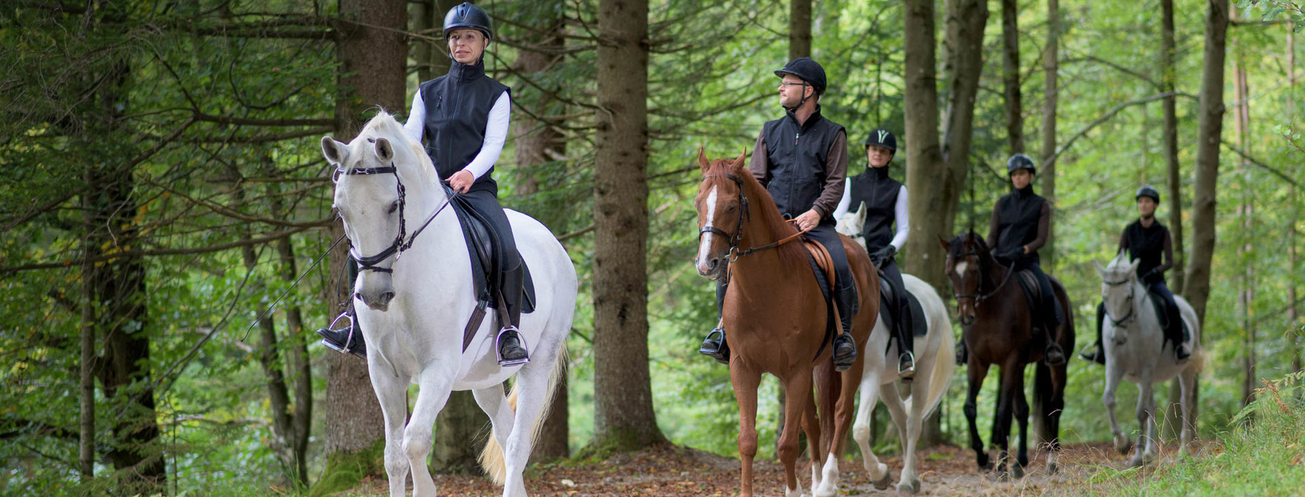 Фото 1 - Прогулянка на конях для компанії