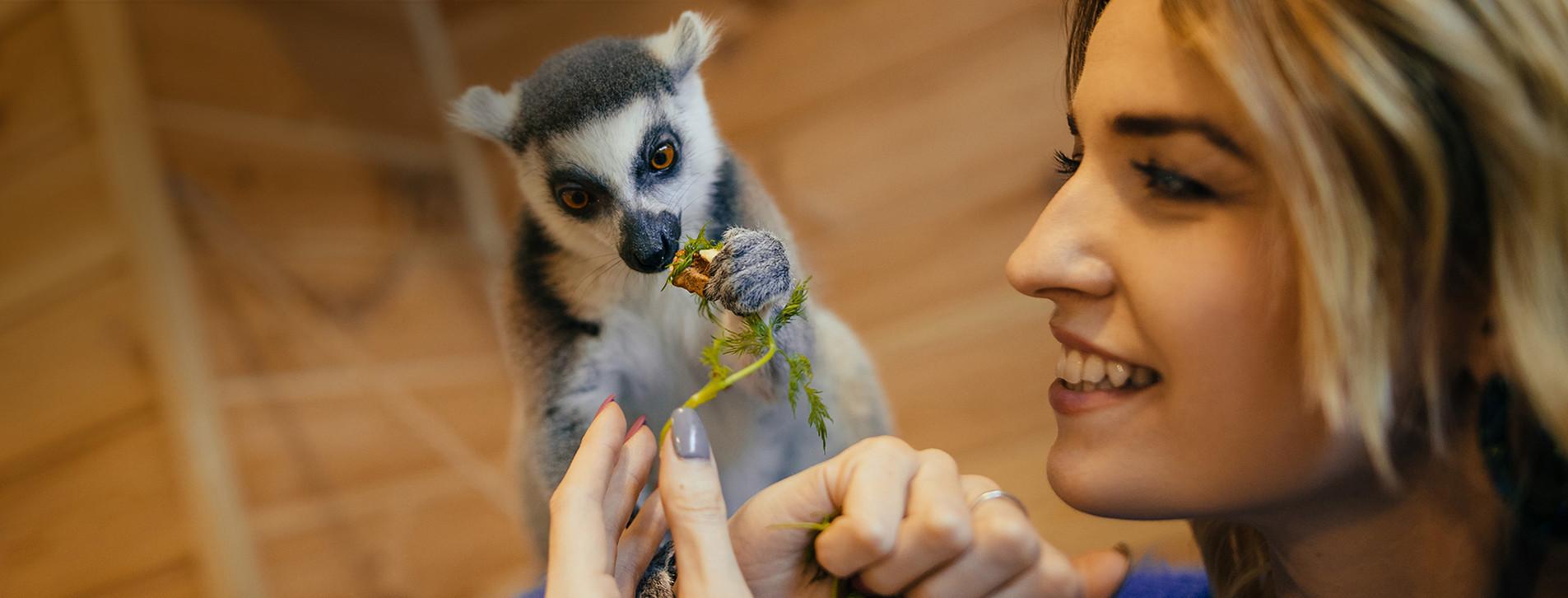 Фото - Контактный зоопарк для компании