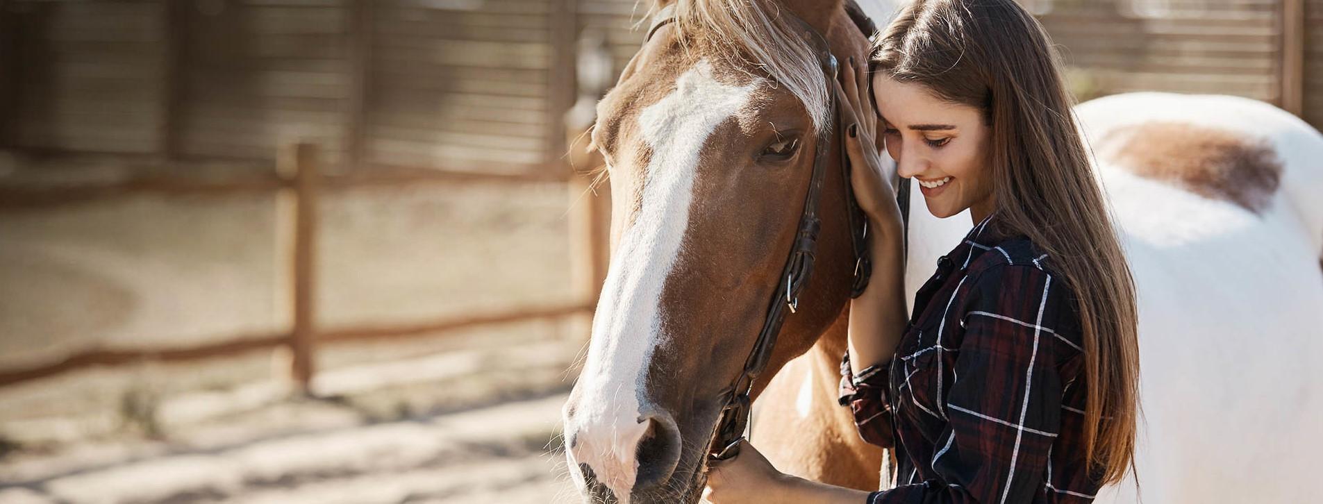 Фото 1 - Фотосессия с лошадьми