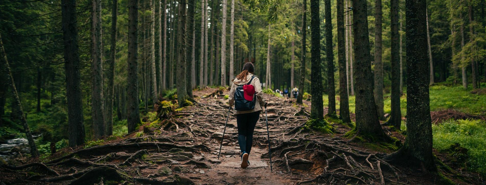 Фото 1 - Сходження на Говерлу