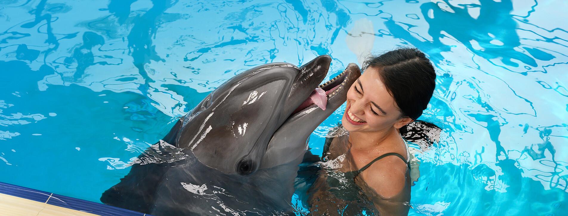 Фото 1 - Плавание с дельфинами