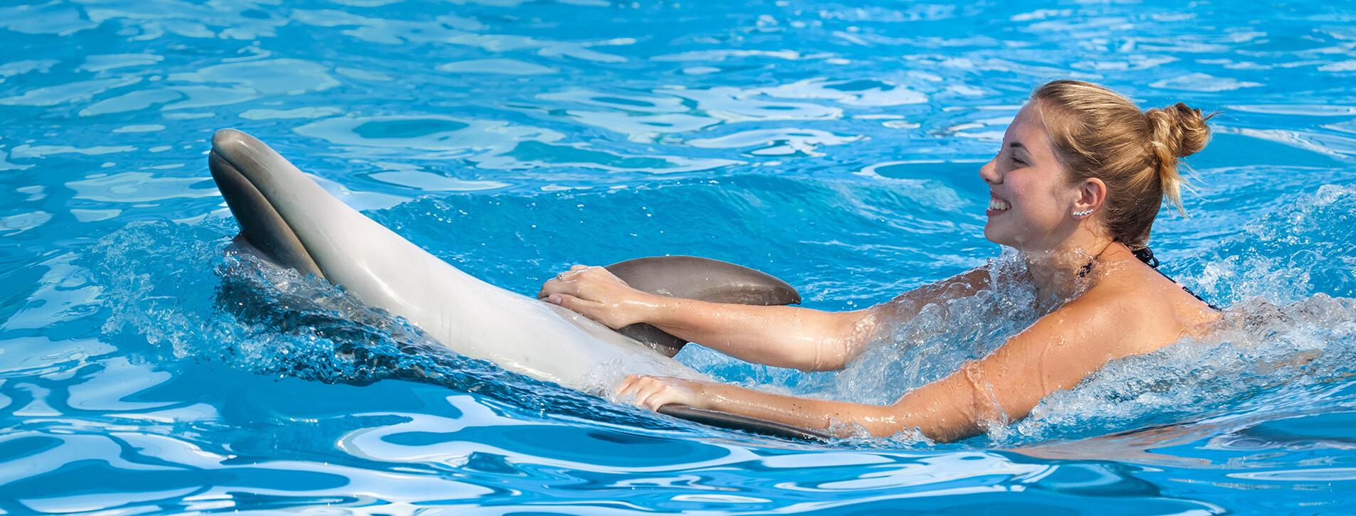 Фото 1 - Плавание с дельфинами для двоих