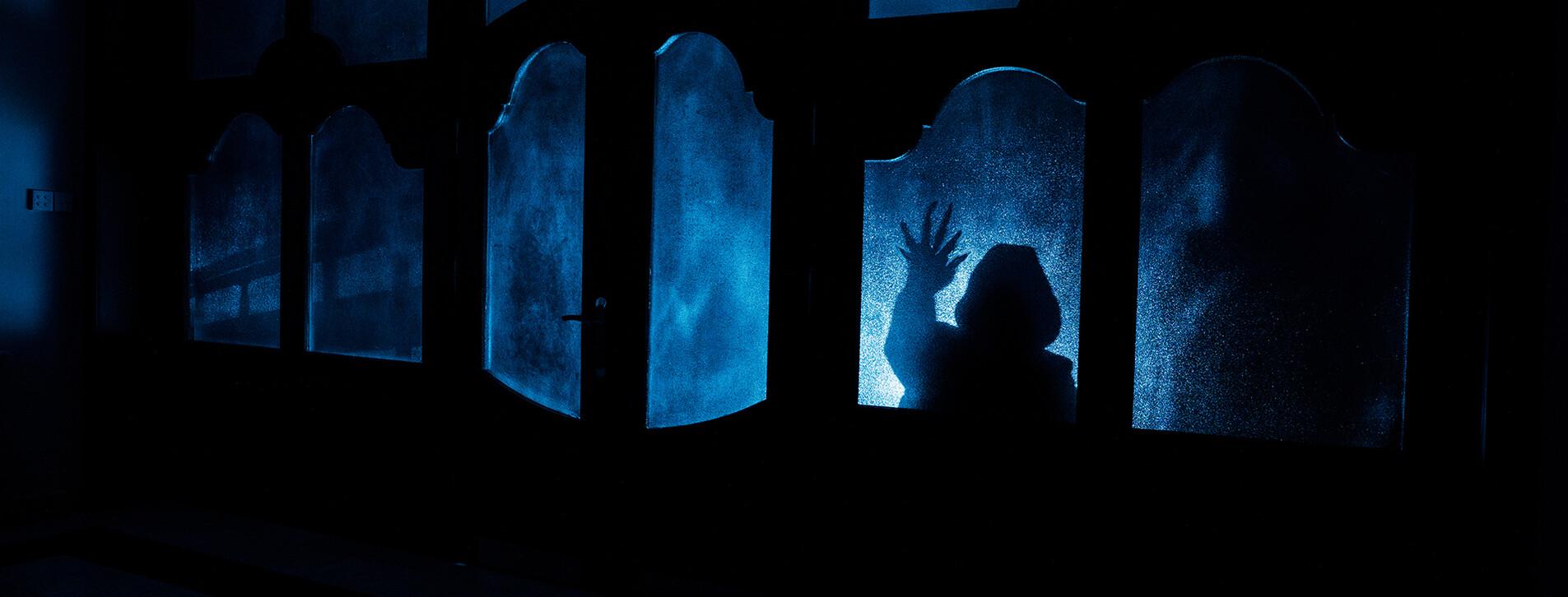 Фото 1 - Комната страха для компании