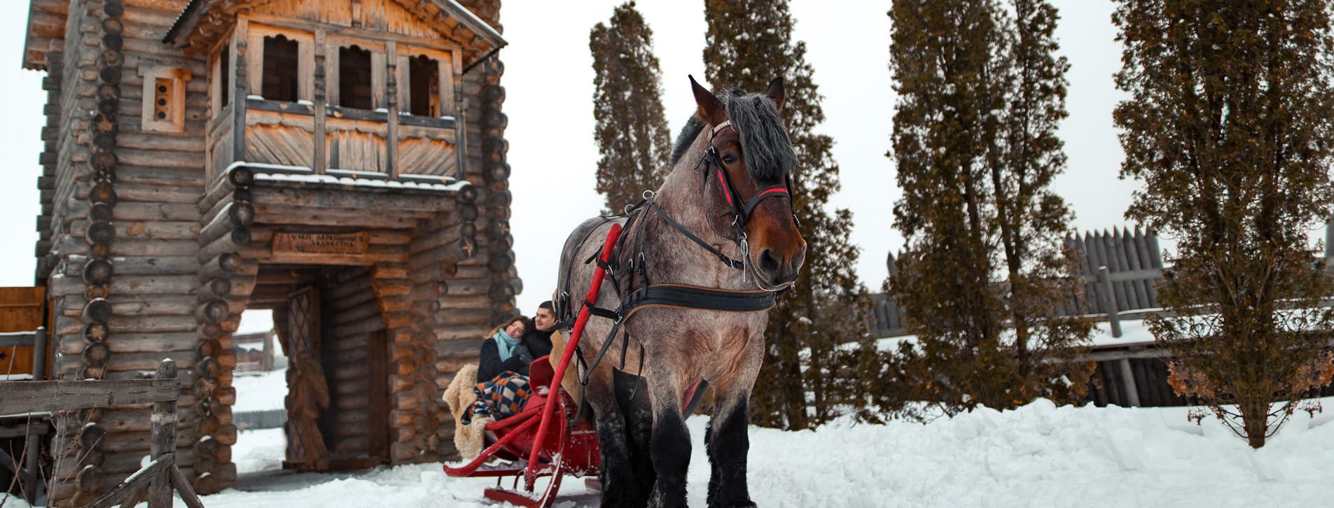 Фото 1 - Зимняя прогулка на санях